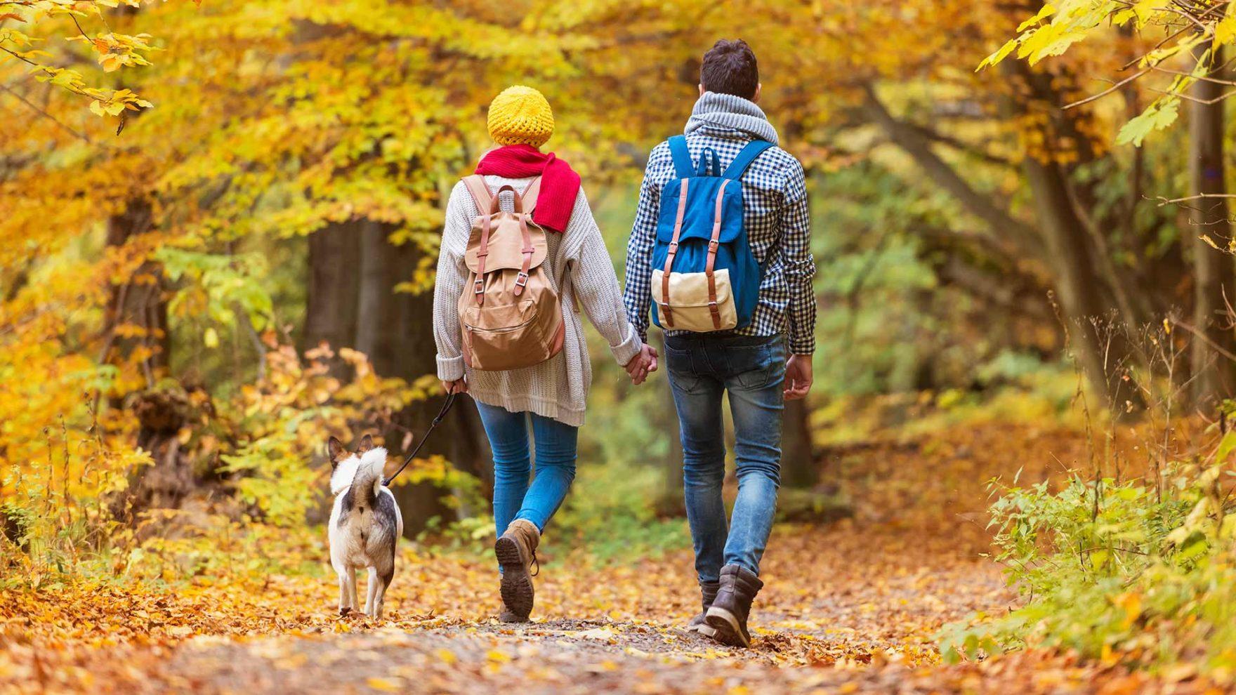 Herbst in Meran und Umgebung - Urlaub mit Hund