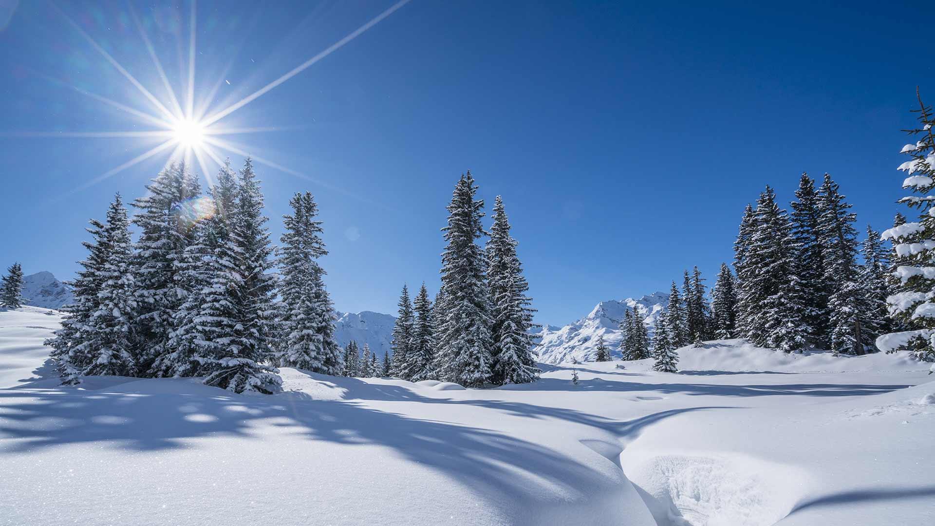 Winterurlaub in Meran und Umgebung