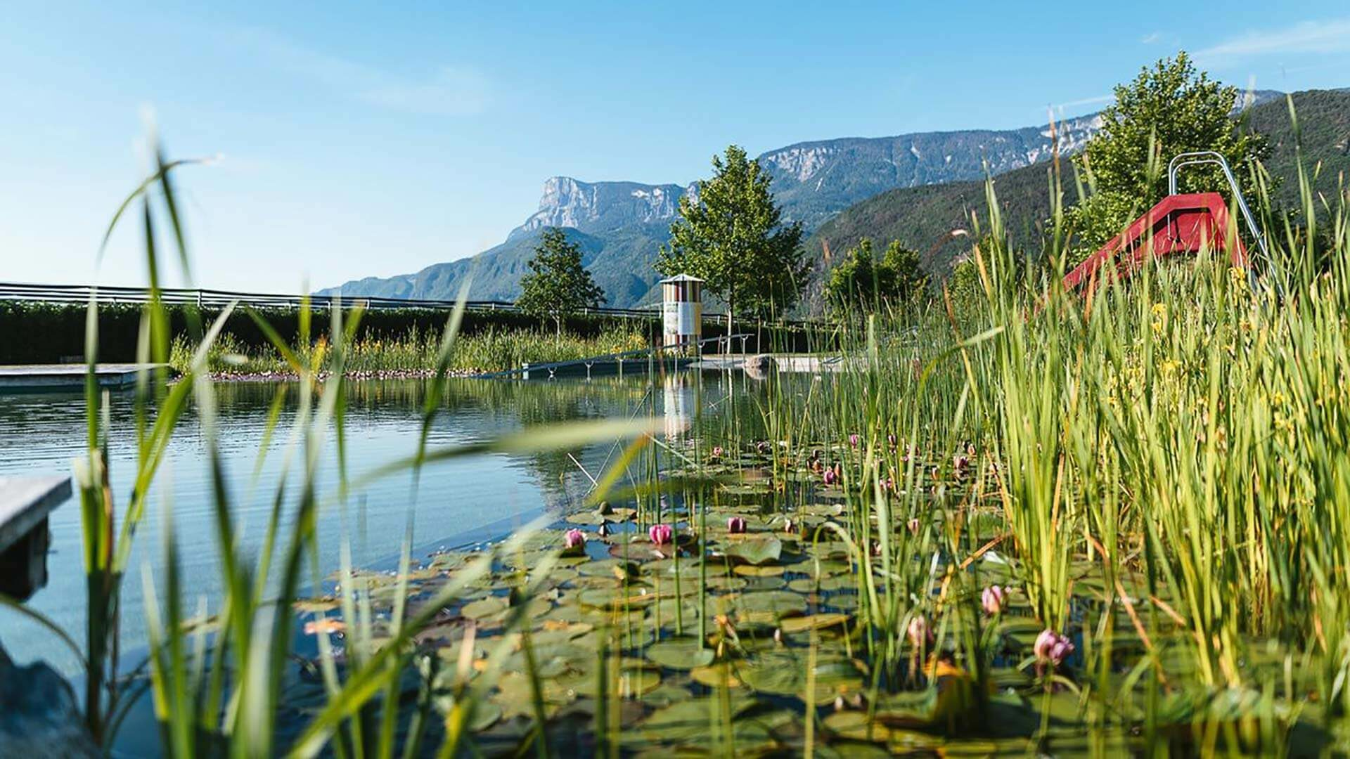 Naturbadeteich mit Berge im Hintergrund