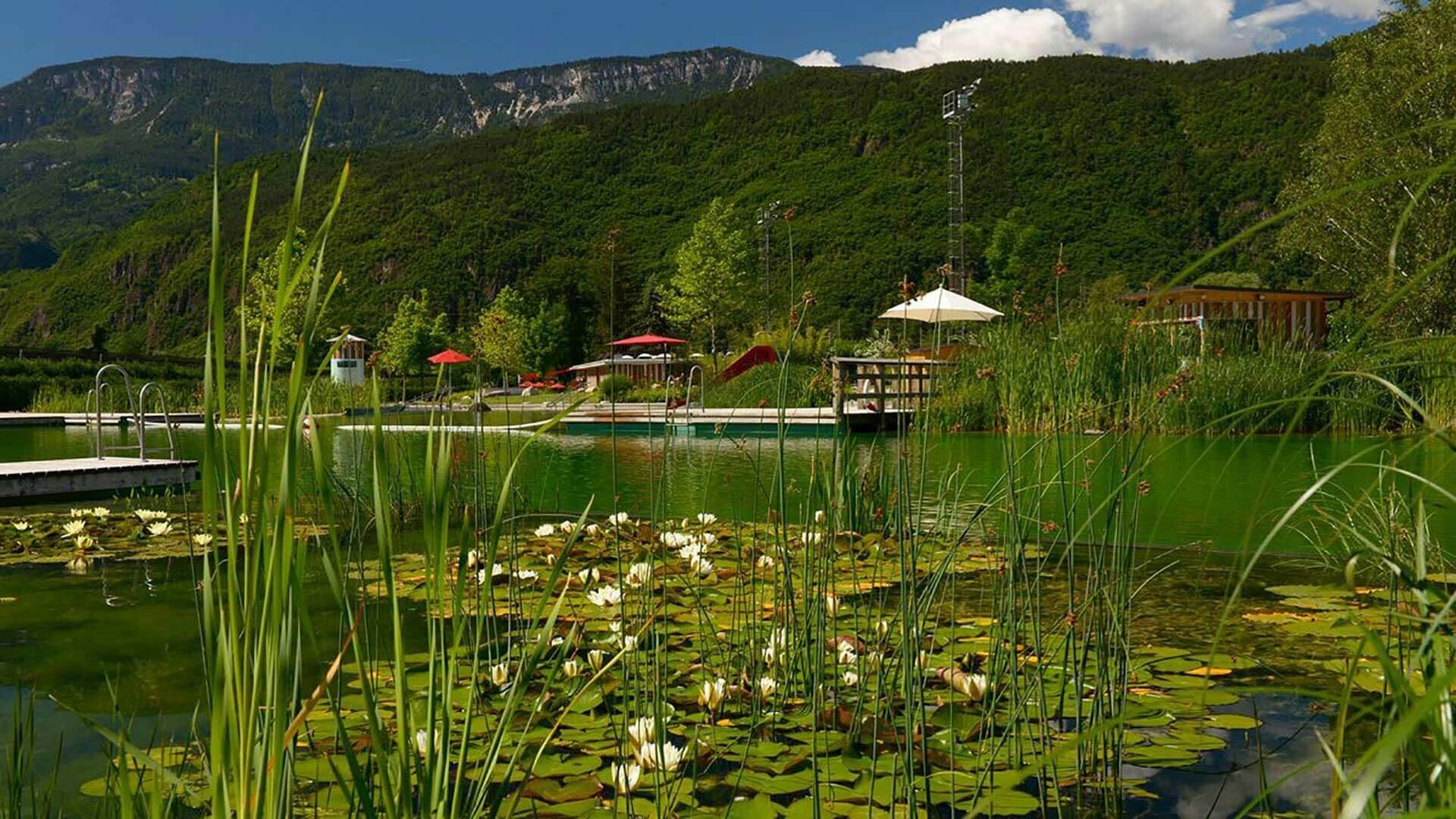 Der Naturbadeteich in Gargazon