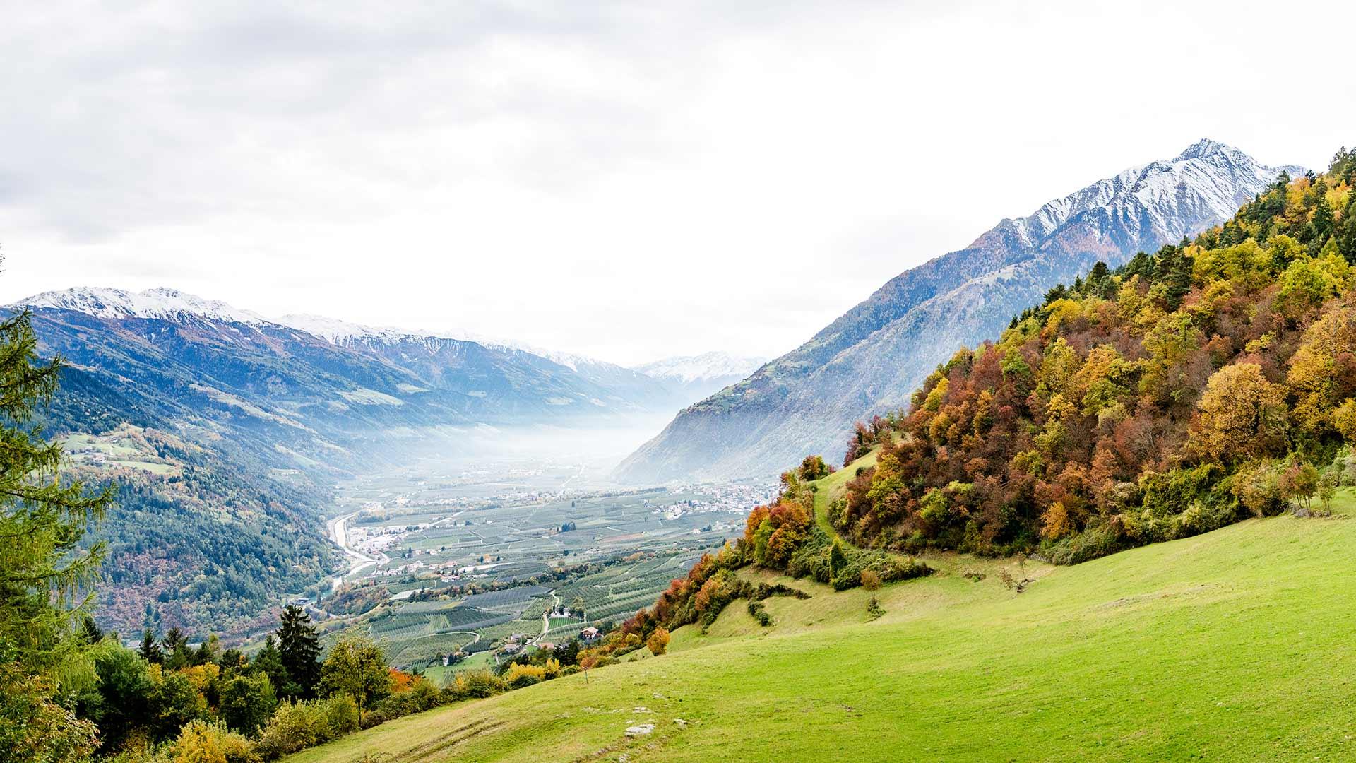 Algund mit Bergwelt