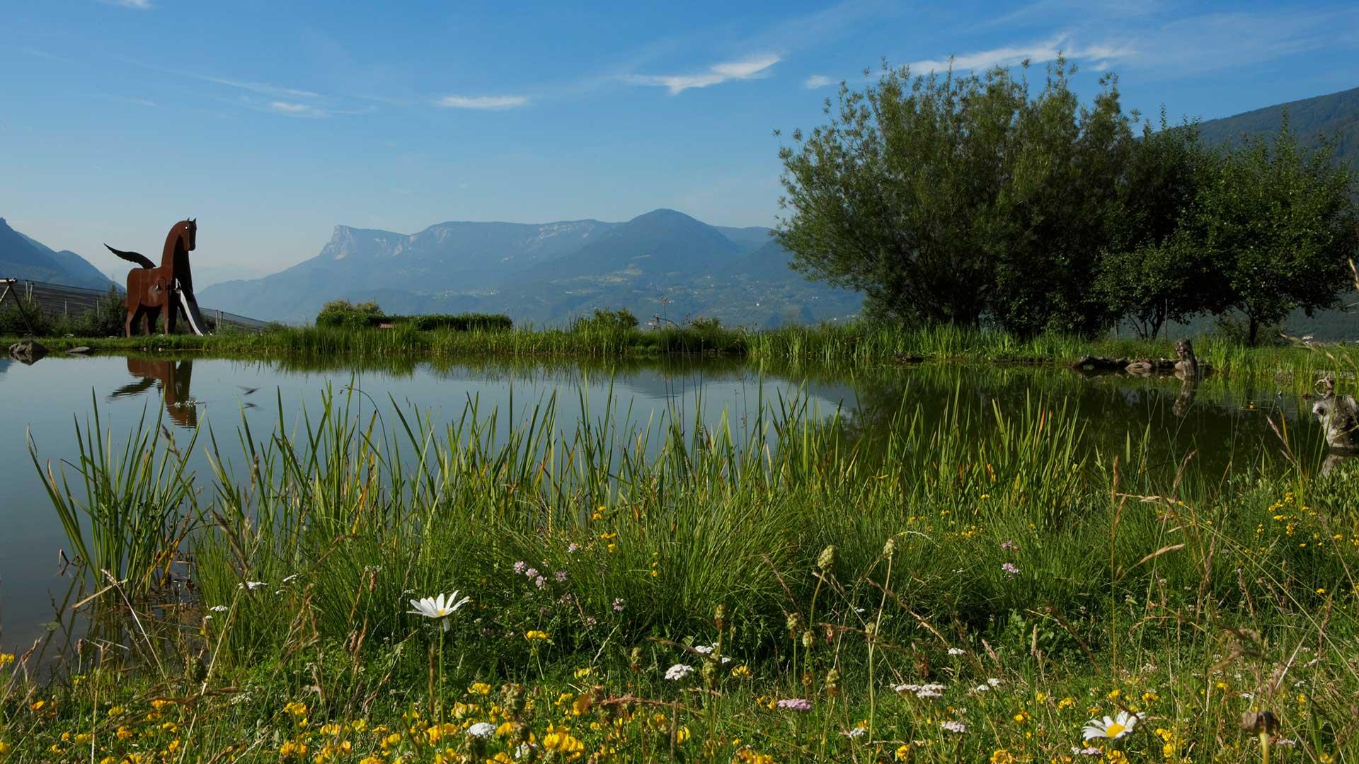 Landschaft - Dorf Tirol
