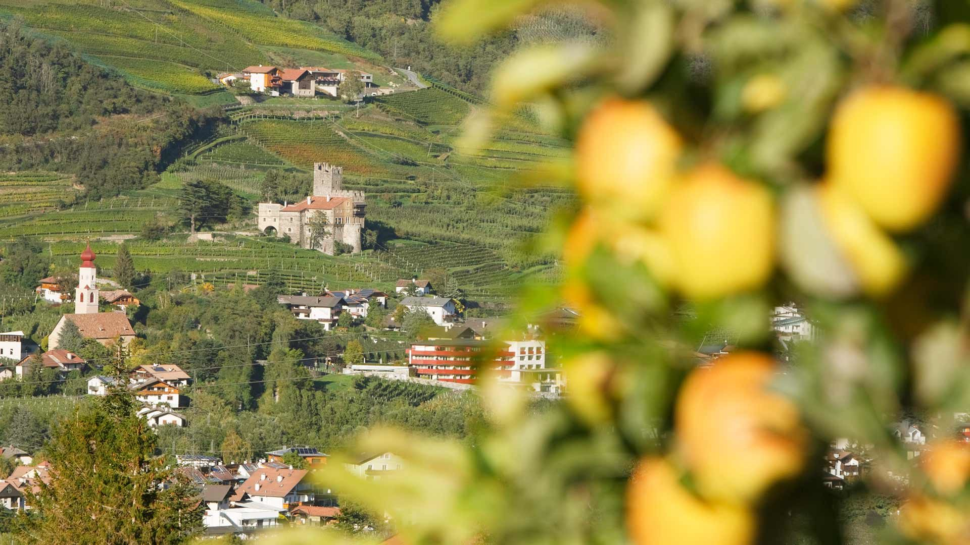 Alpine-Wellness-Ferienort Naturns
