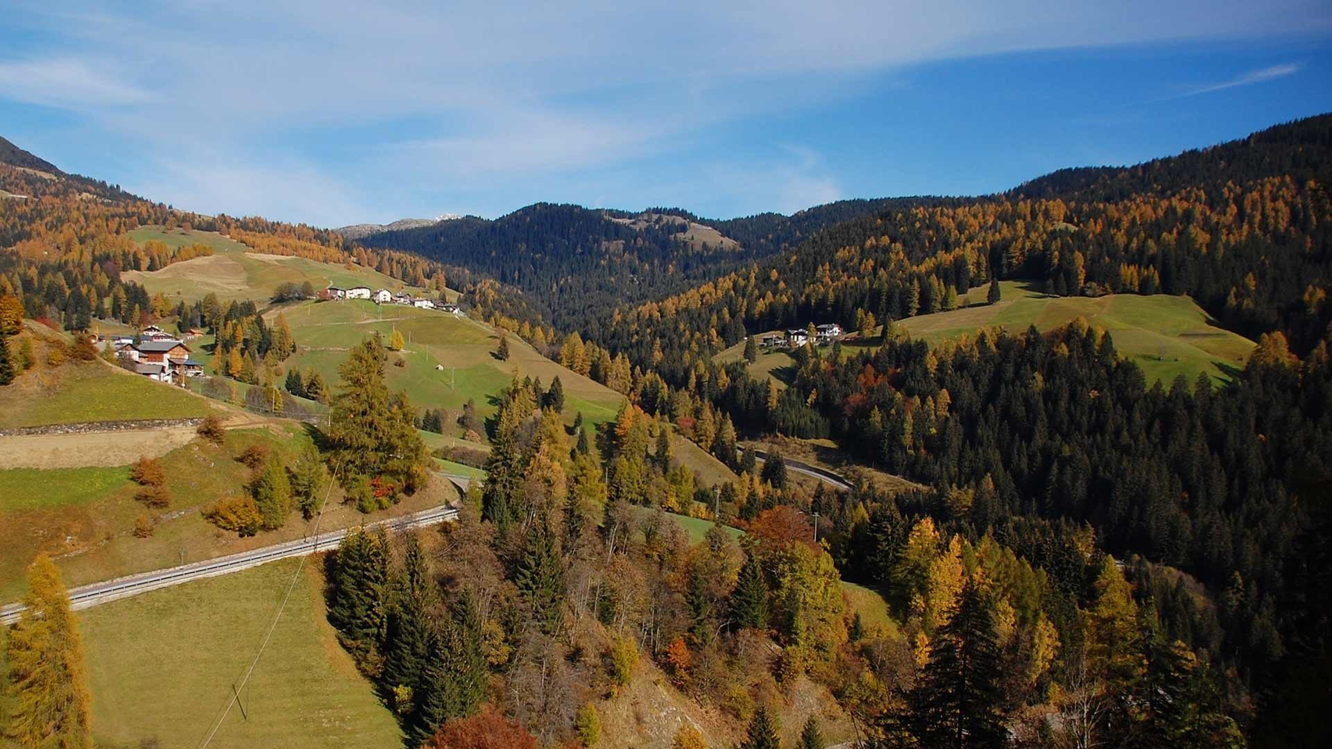 Proveis - Herbst