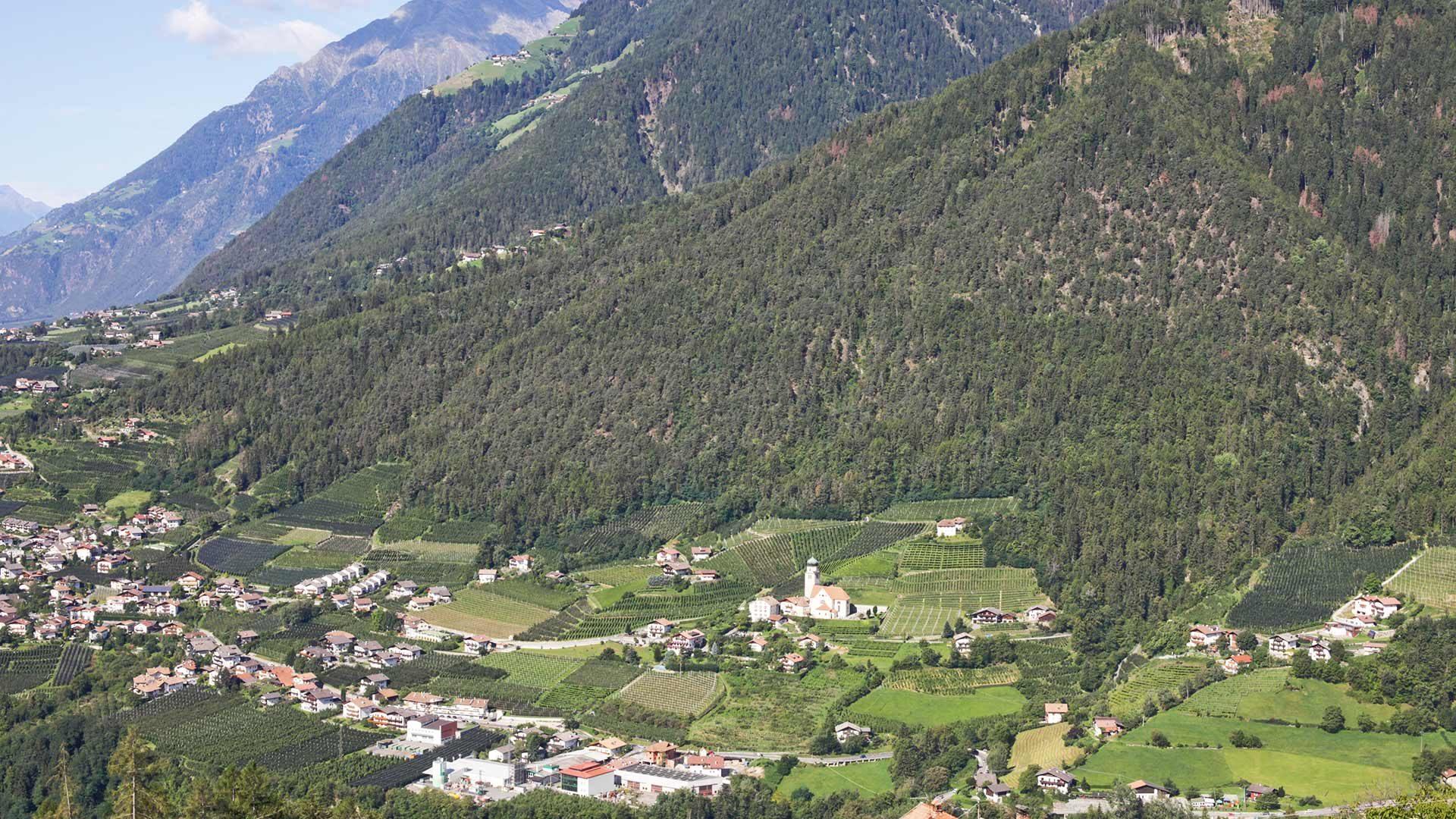 Riffian in Südtirol