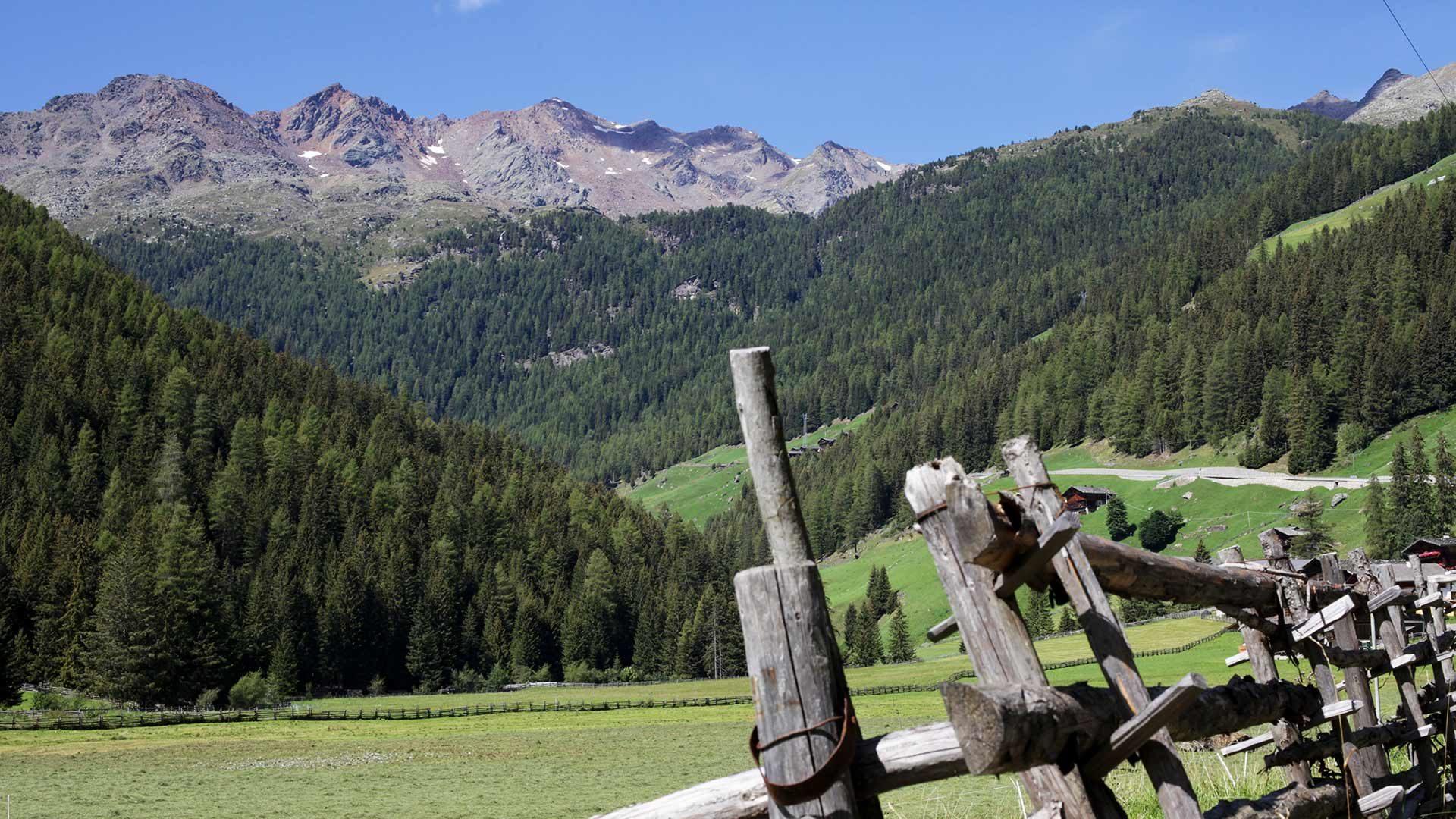 Urlaubsort St. Walburg in Südtirol