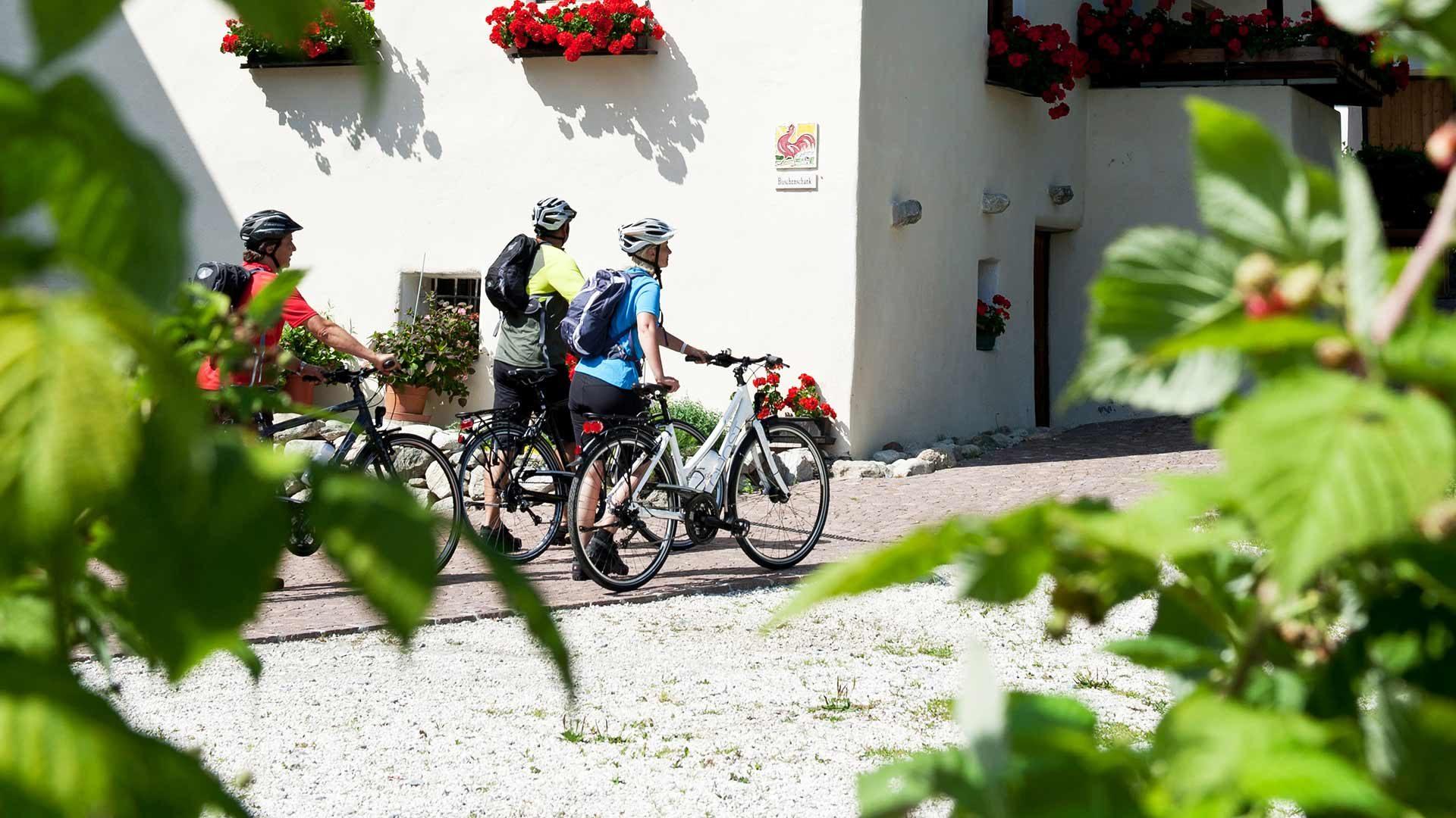 Etschtalradweg Meran - Bozen