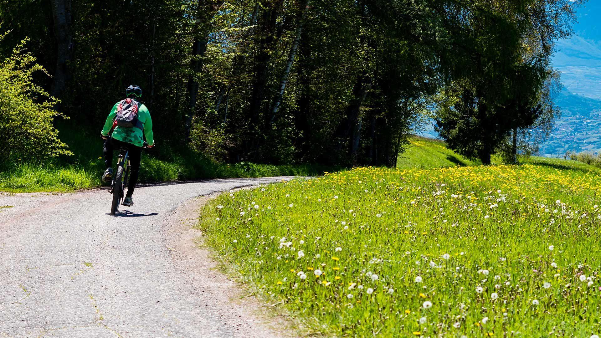 Radroute Kuens - Meran - Dorf Tirol - Kuens