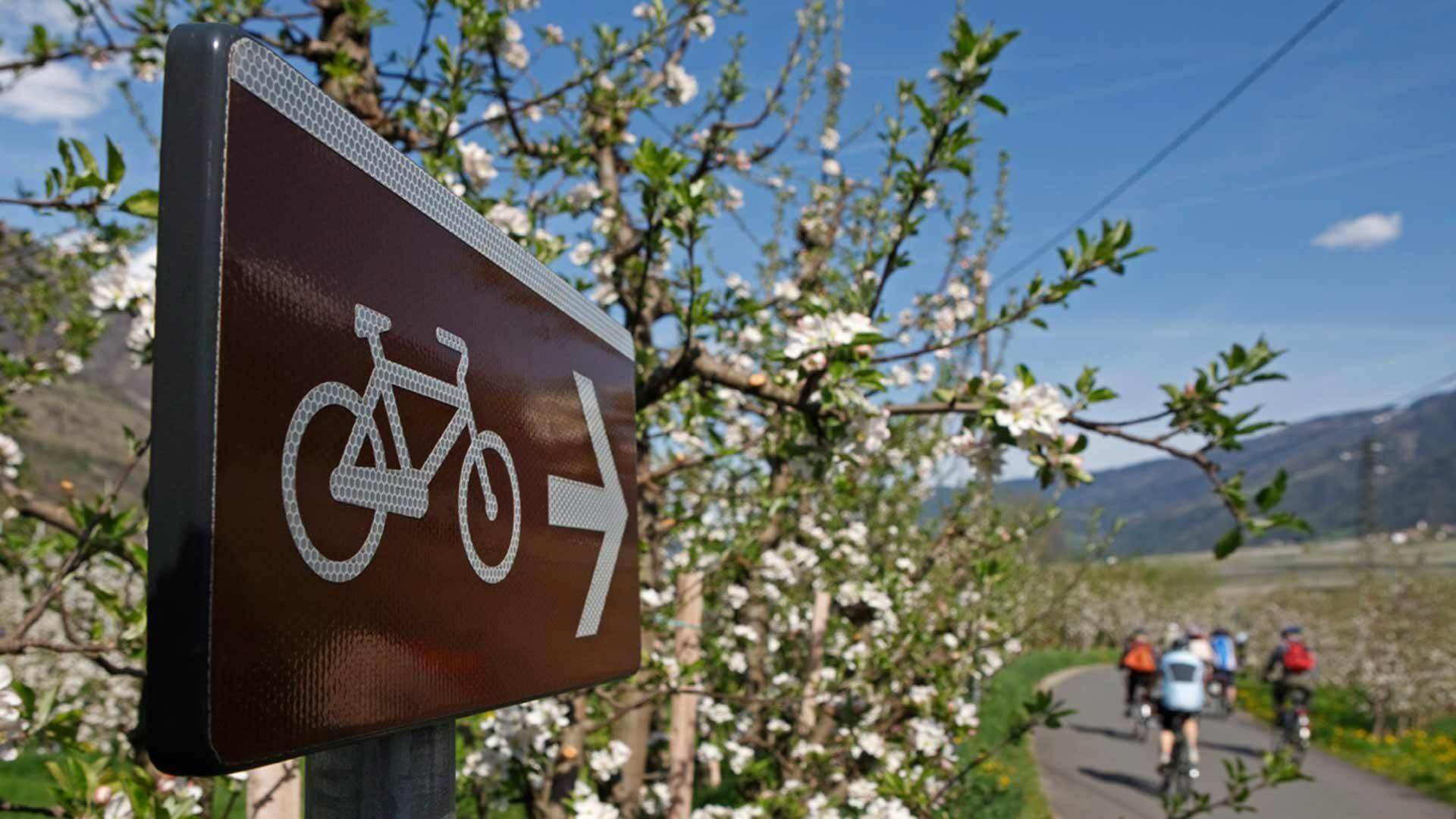 Radtour Meran - Naturns