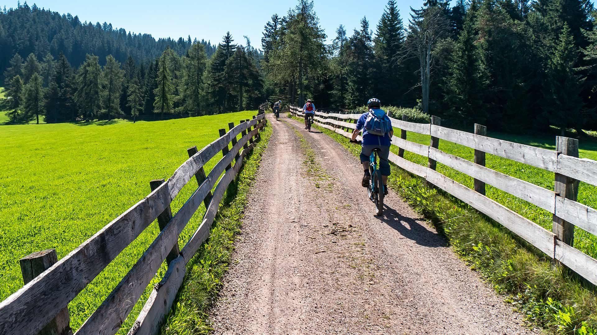 Radtour zur Naturnser Alm