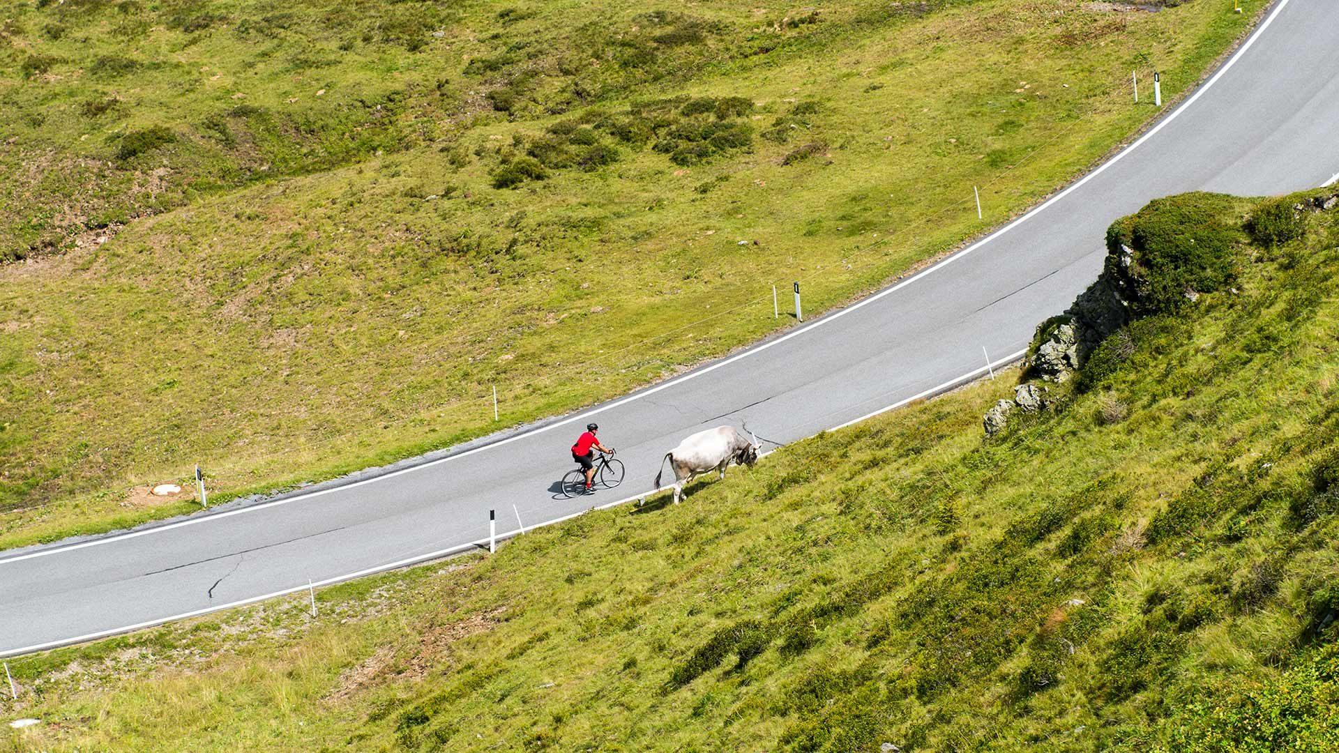 Radtour - Jaufenpass