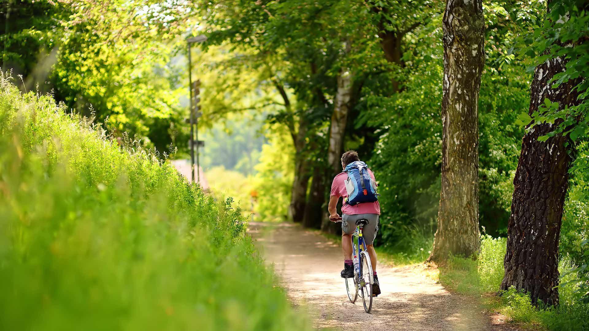 Radtour zur Wannser Alm