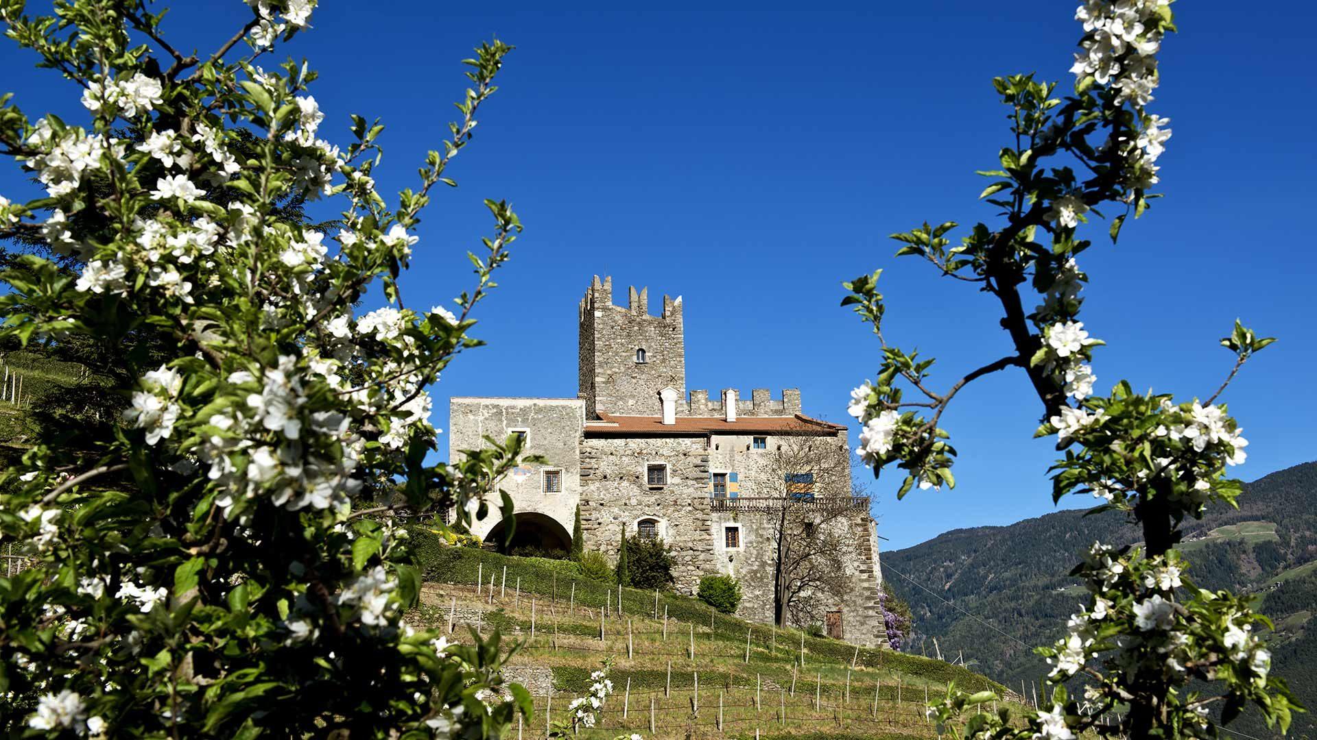 Schloss Hochnaturns und Schloss Dornsberg