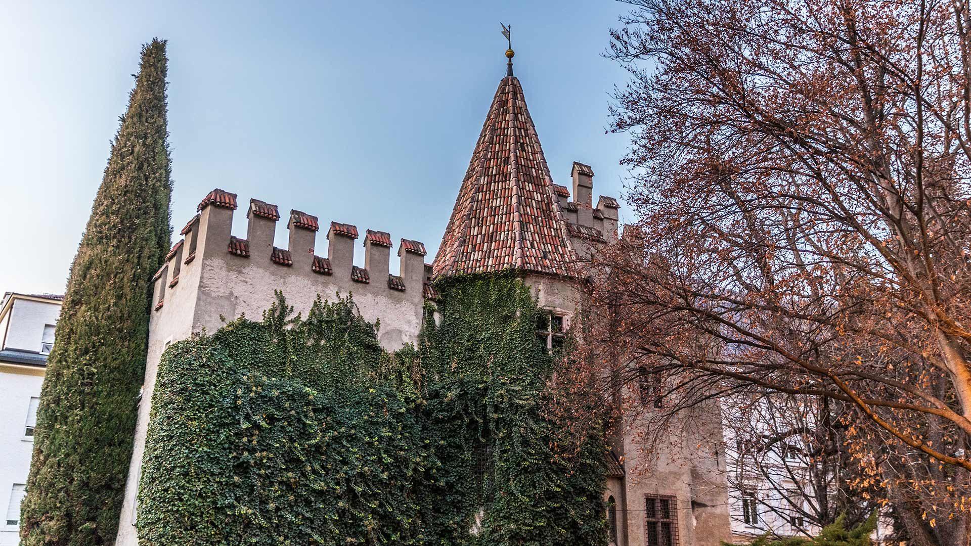 Die Landesfürstliche Burg