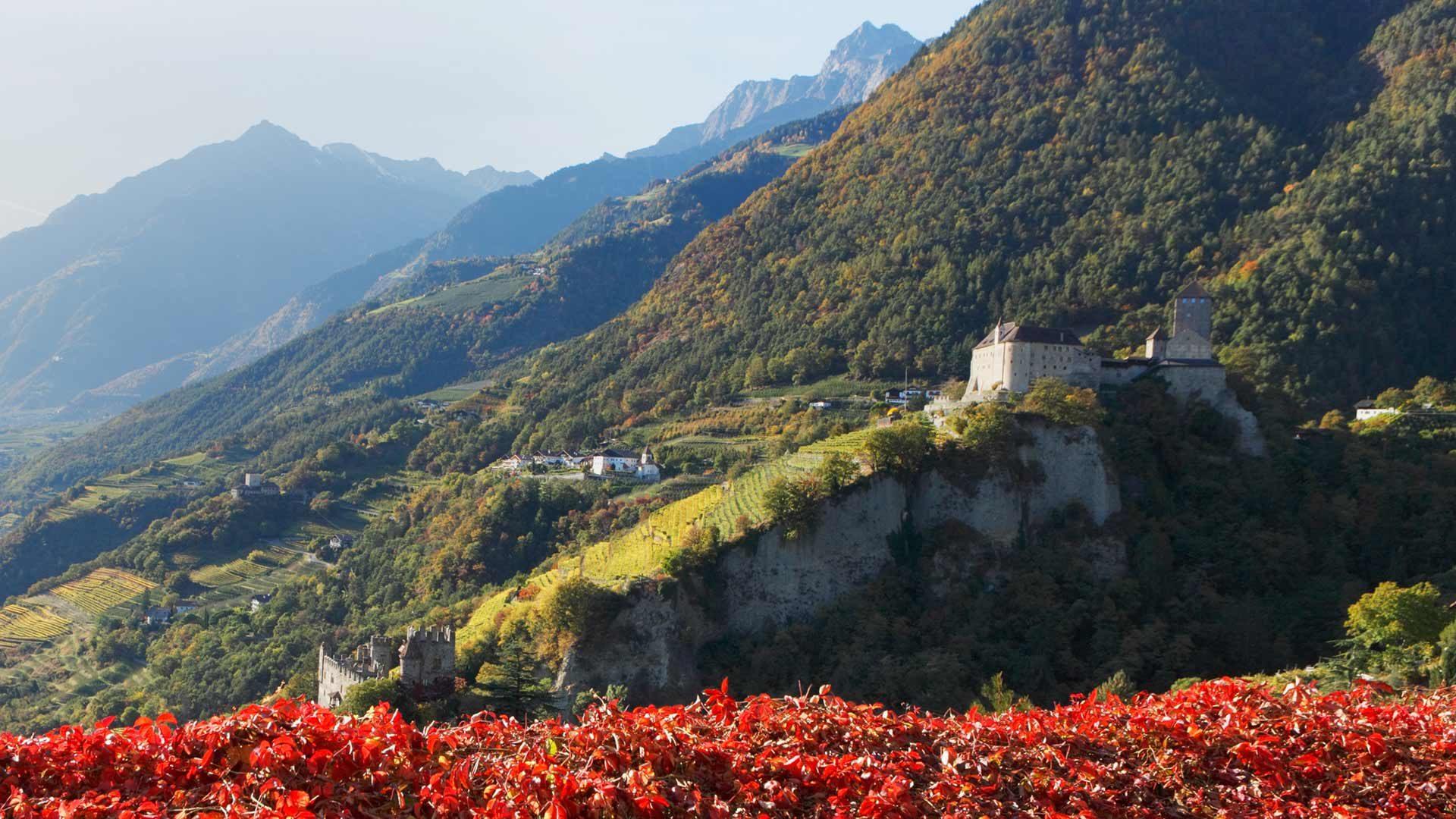 Herbsturlaub - Schloss Tirol