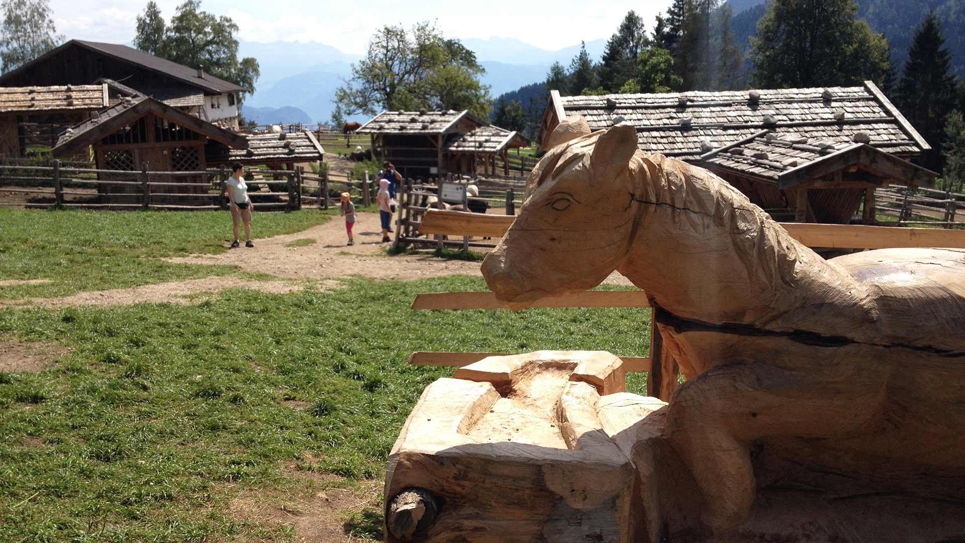 Tierwelt Rainguthof in Gfrill in Südtirol