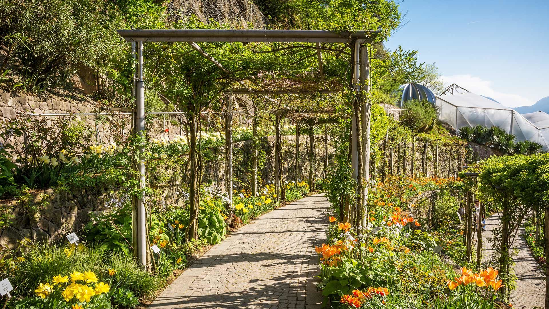 Blumen - Gärten von Schloss Trauttmansdorff