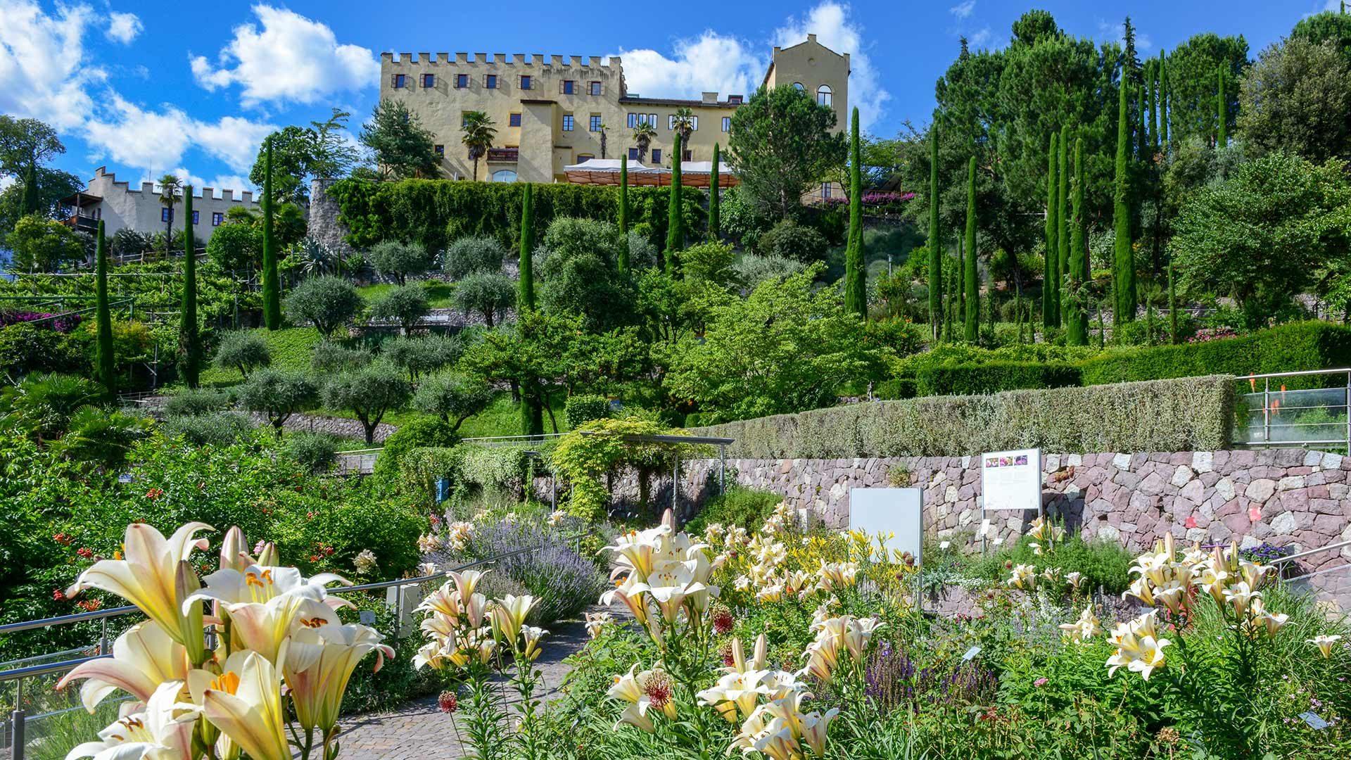 Gärten von Schloss Trauttmansdorff im Frühjahr