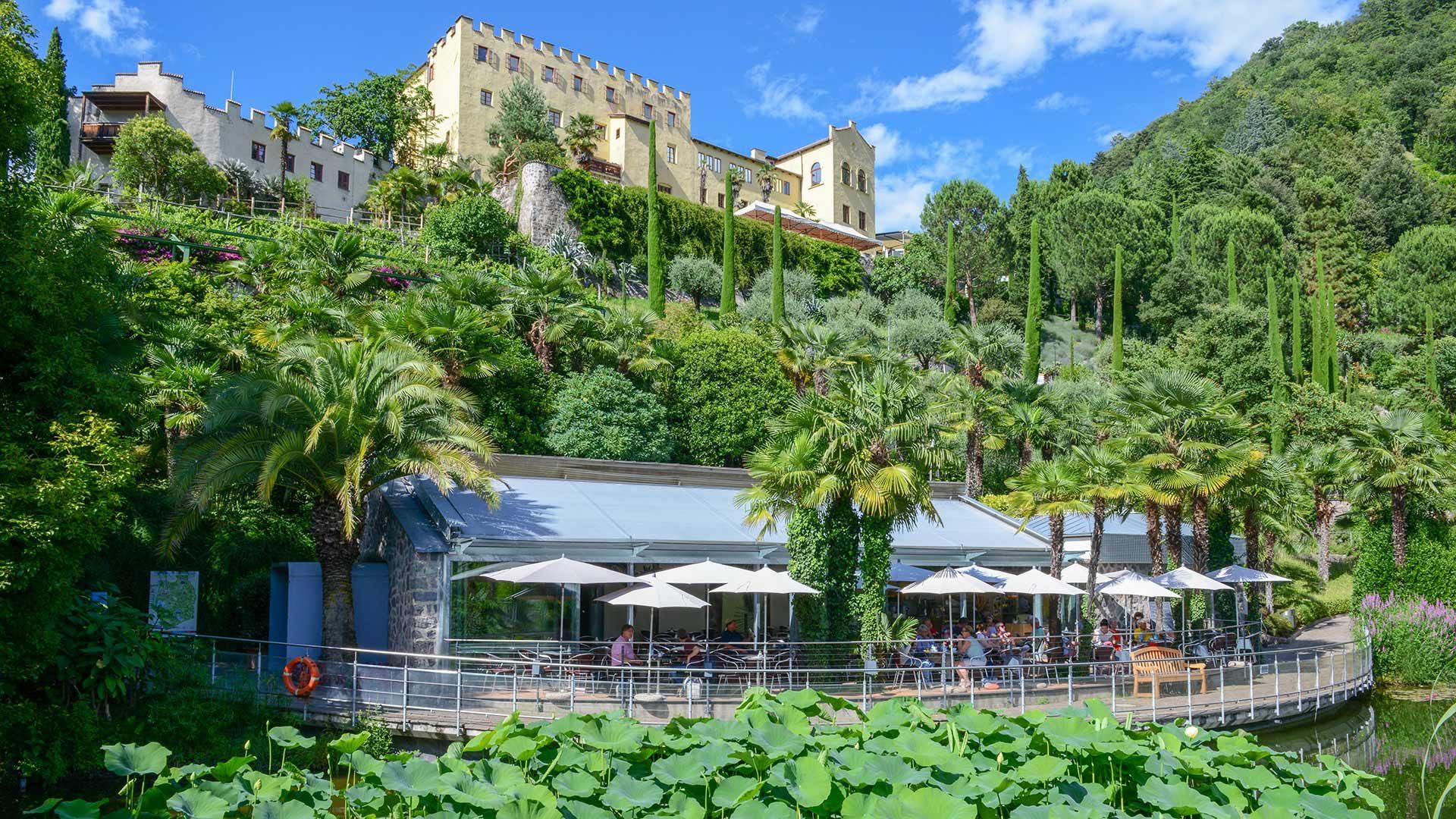Pflanzen aus aller Welt - Gärten von Schloss Trauttmansdorff