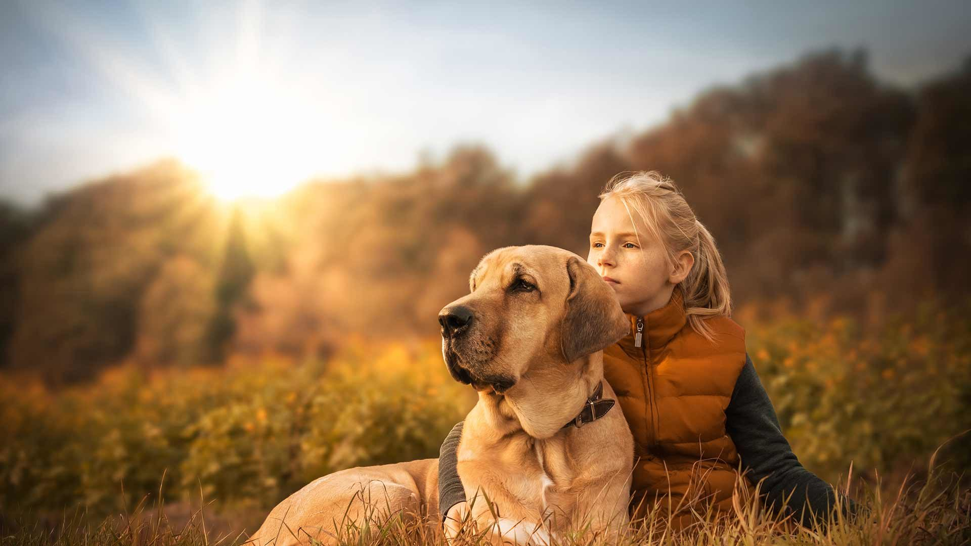 Unterkünfte für den Urlaub mit Hund