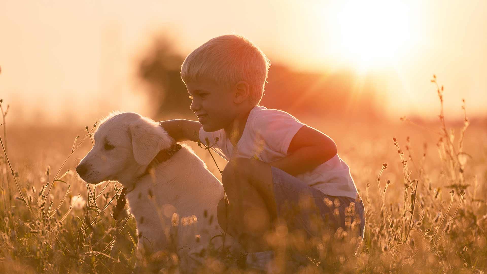 Meran - Urlaub mit Hund