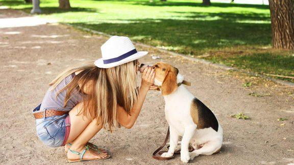 Urlaub mit Hund in Meran und Umgebung
