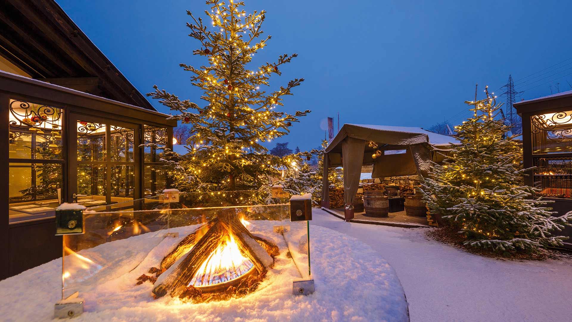 Forster Weihnachtswald