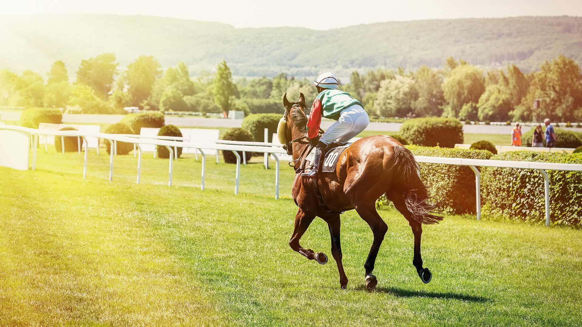 Großer Preis von Meran Südtirol - Pferderennen