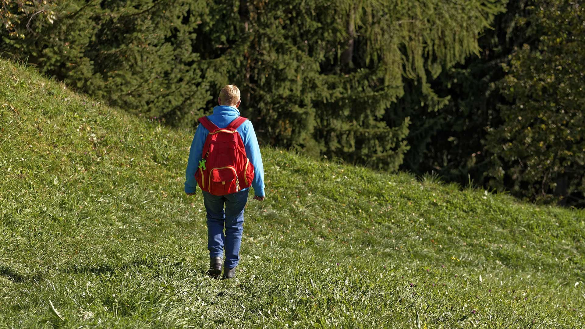 Almwanderung am Nörderberg