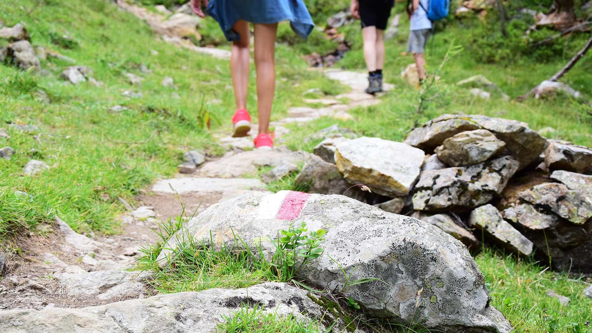 Aufstieg zur Schöngrub und Ultner Hochwart