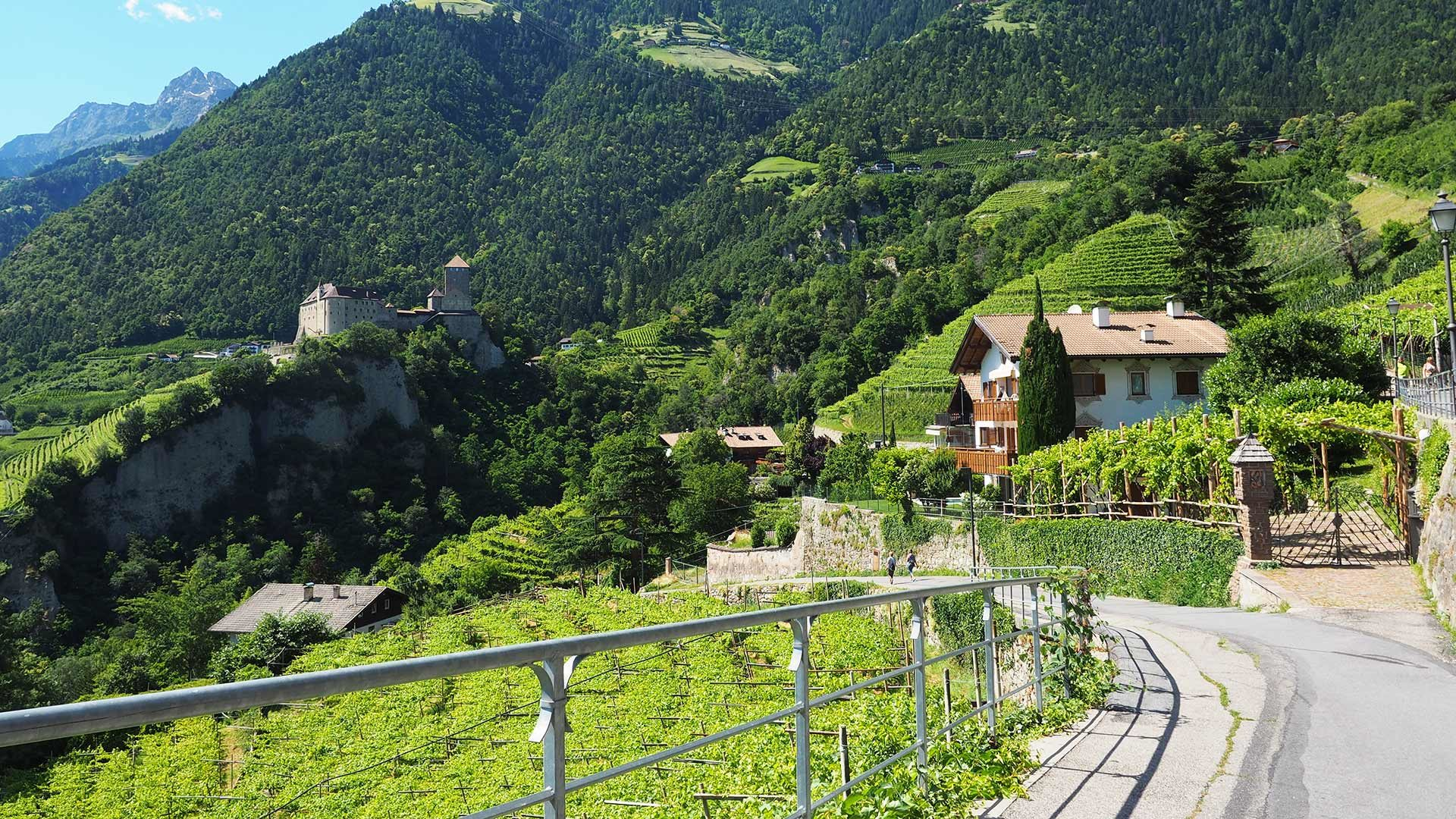Kulturweg Dorf Tirol