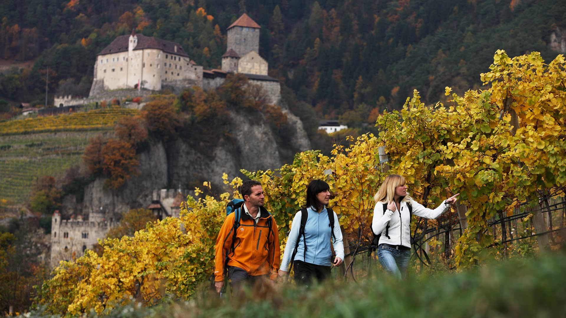 Meran - Gfeis - Spronsertal - Dorf Tirol - Meran