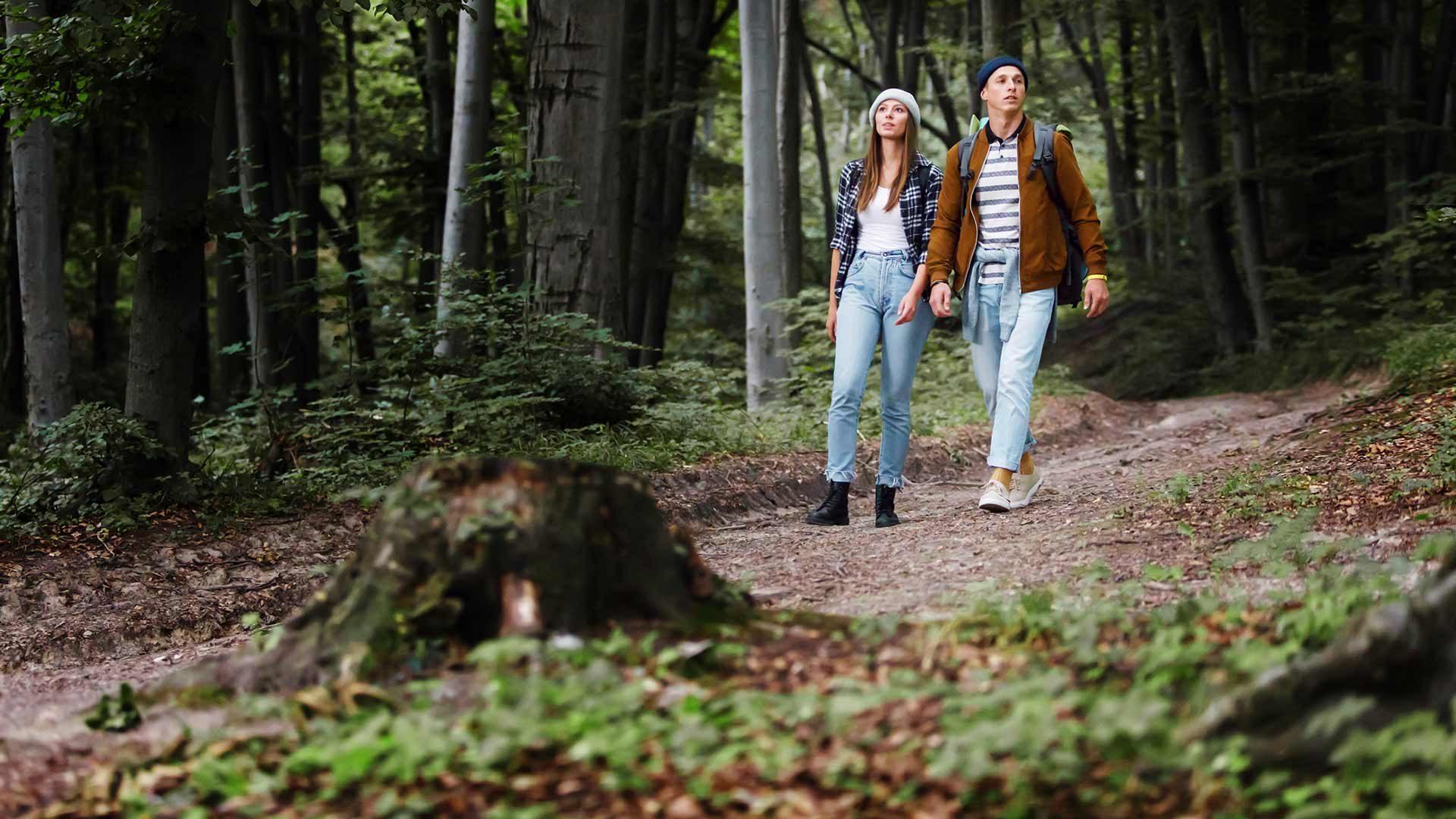 Wanderung Riffian - Dorf Tirol