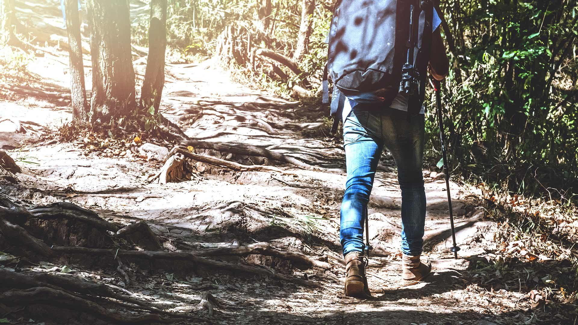 Wanderung zum Schönegg